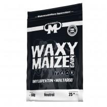 Amylopektin Waxy Maize Gain